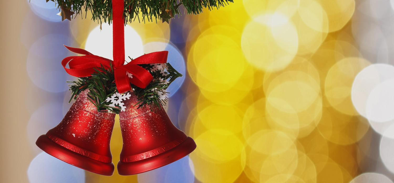 Veelgestelde vragen over Nordmann Excellent kerstbomen in Cruquius