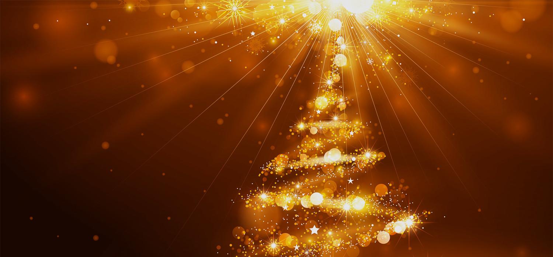 Kerstbomen voor bedrijven in Cruquius